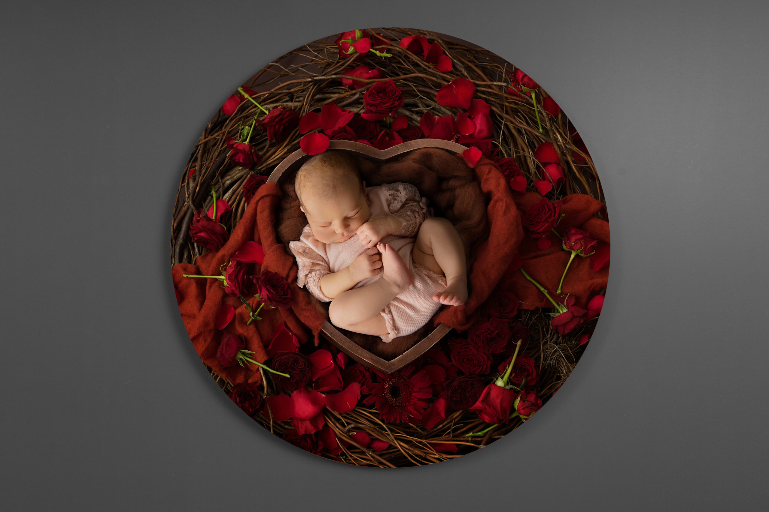 Digital composite photo of a newborn with flowers at rachael phillips photography in mansfield, nottingham