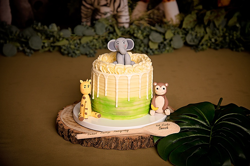 Cake with animals for a cake smash session in mansfield