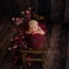 Newborn baby girl sat in a bucket - mansfield photographer