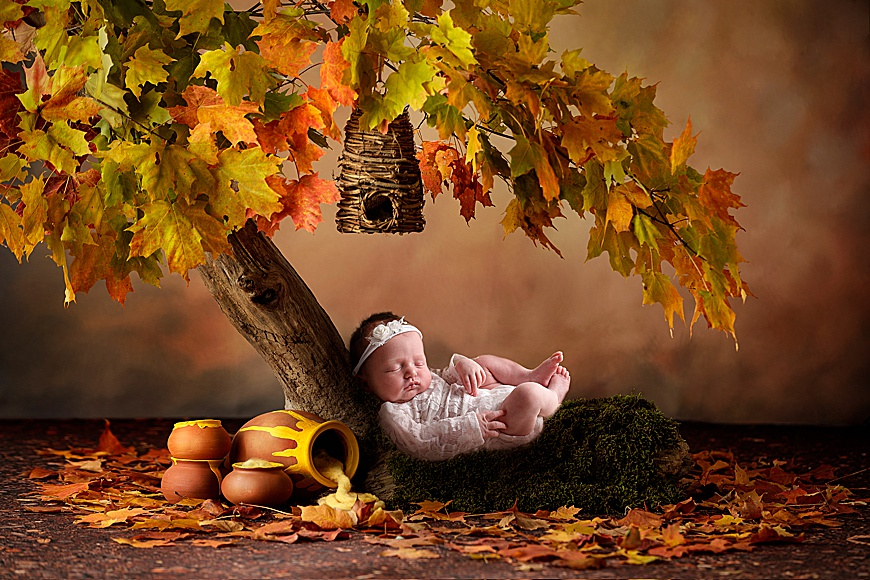 digital composite photo of a girl laying on a tree with empty honey pots