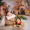 newborn baby girl whos parents love disney winnie the pooh bear, she's in a bucket for posing